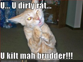 U... U dirty rat...  U kilt mah brudder!!!