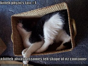 kitteh phyzics law #1  a kitteh alwayz assumes teh shape of itz container