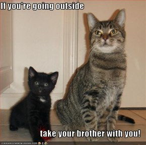 If you're going outside  take your brother with you!
