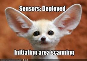 Sensors: Deployed