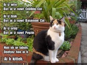 Ai  iz  witeBut  ai  iz  nawt  Ceeling  Cat