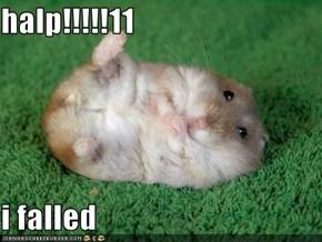 halp!!!!!11  i falled