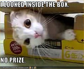 I LOOKED INSIDE THE BOX.  NO PRIZE.