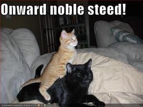 Onward noble steed!
