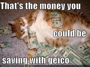 That's the money you could be  saving with geico