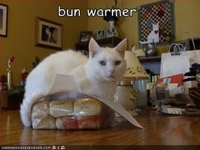 bun warmer