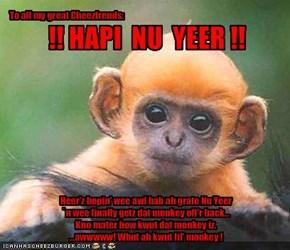 Heer'z hopin' wee awl hab ah grate Nu Yeer `n wee finally getz dat monkey off'r back... Kno mater how kwut dat monkey iz....awwwww! Whut ah kwut lil' monkey !