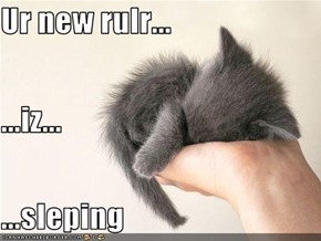 Ur new rulr... ...iz... ...sleping