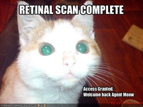 RETINAL SCAN COMPLETE