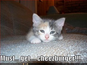 Must... get.... cheezburger!!!