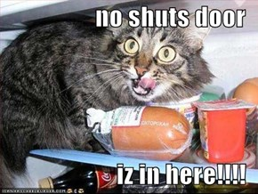 no shuts door  iz in here!!!!