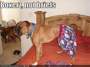 Boxerz, not briefs