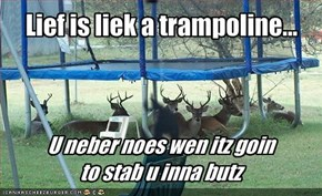 Lief is liek a trampoline...