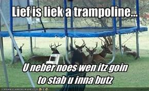 Lief is liek a trampoline...