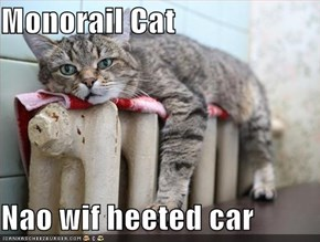 Monorail Cat  Nao wif heeted car
