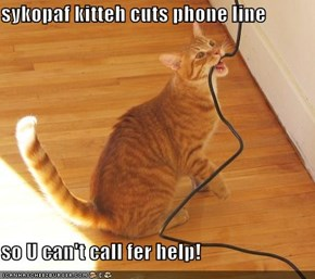 sykopaf kitteh cuts phone line  so U can't call fer help!