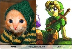 Kitteh Totally Looks Like Link