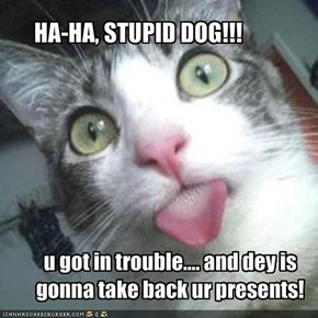 HA-HA, STUPID DOG!!!