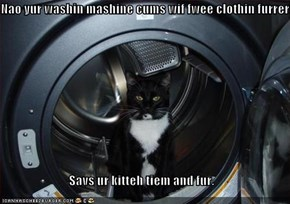 Nao yur washin mashine cums wif fwee clothin furrer!  Savs ur kitteh tiem and fur.