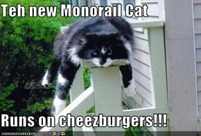Teh new Monorail Cat  Runs on cheezburgers!!!