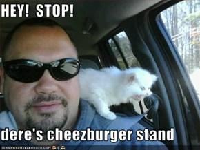 HEY!  STOP!  dere's cheezburger stand