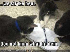 ...we stryke heer.  Dog not knau what hit dem.