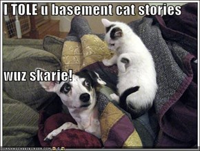 I TOLE u basement cat stories  wuz skarie!