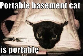Portable basement cat  is portable