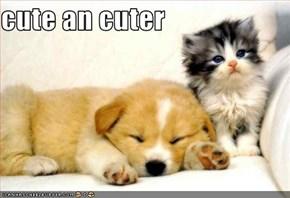 cute an cuter