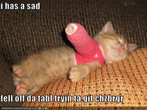 i has a sad  fell off da tabl tryin ta git chzbrgr
