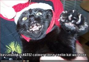 bassmunt kat HATEZ catmus cause ceelin kat wuz born