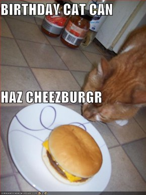 BIRTHDAY CAT CAN HAZ CHEEZBURGR