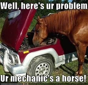 Well, here's ur problem...  Ur mechanic's a horse!