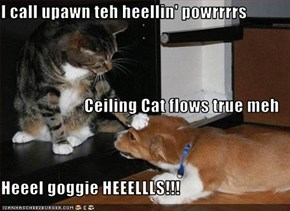 I call upawn teh heellin' powrrrrs Ceiling Cat flows true meh Heeel goggie HEEELLLS!!!