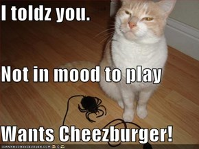 I toldz you. Not in mood to play Wants Cheezburger!