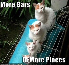 More Bars   In More Places