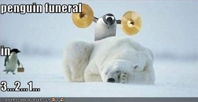 penguin funeral in 3...2...1...
