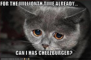 FOR THE MILLIONTH TIME ALREADY...  CAN I HAS CHEEZBURGER?