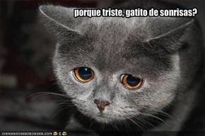 porque triste, gatito de sonrisas?