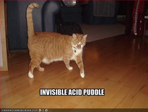 INVISIBLE ACID PUDDLE