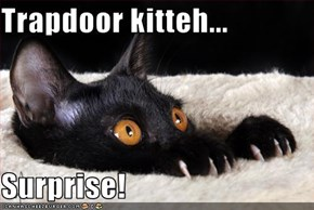 Trapdoor kitteh...  Surprise!
