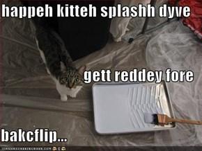 happeh kitteh splashh dyve gett reddey fore bakcflip...