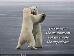 Life gives us 