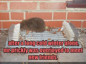 after a long cold winter alone,