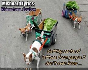 Misheard Lyrics: Glen Campbell - Rhinestone Cowboy