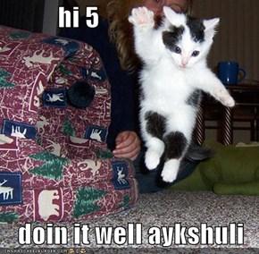 hi 5  doin it well aykshuli