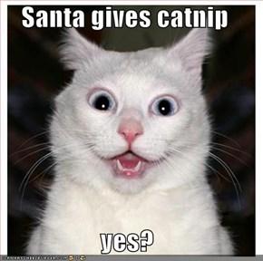 Santa gives catnip  yes?