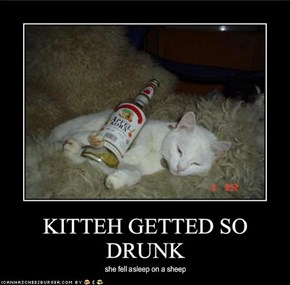 KITTEH GETTED SO DRUNK
