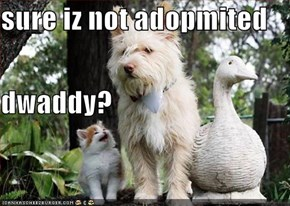sure iz not adopmited  dwaddy?