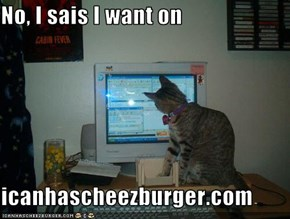 No, I sais I want on  icanhascheezburger.com
